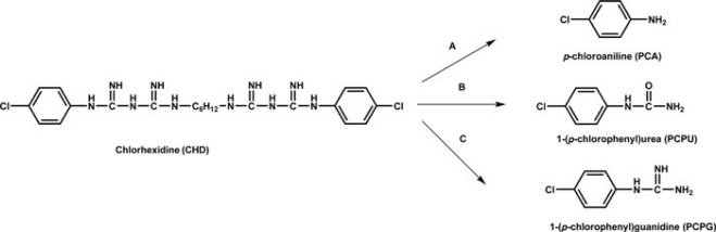 structure activity relationship of barbiturates pdf